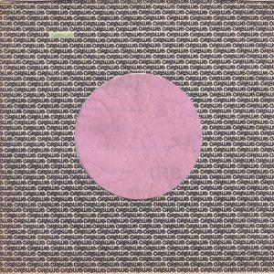Crewe Records U.S.A. Company Sleeve 1970